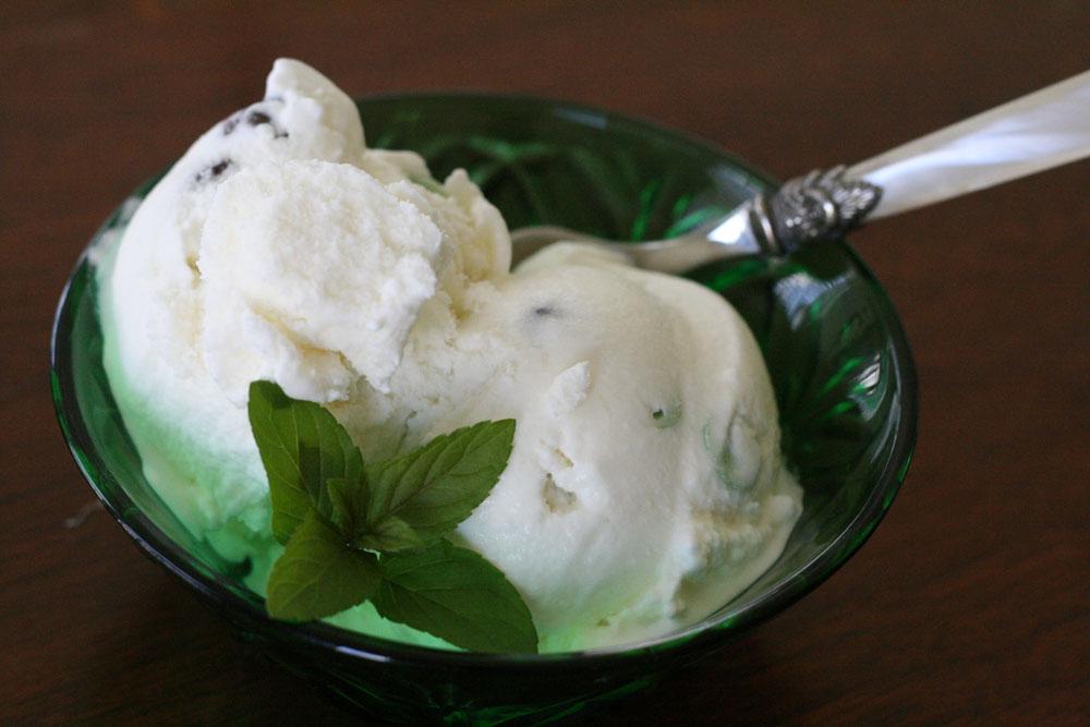 cuisinart frozen yogurt ice cream maker manual